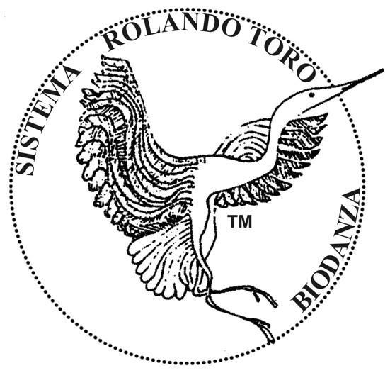 Logo   Palliotto Patrizia